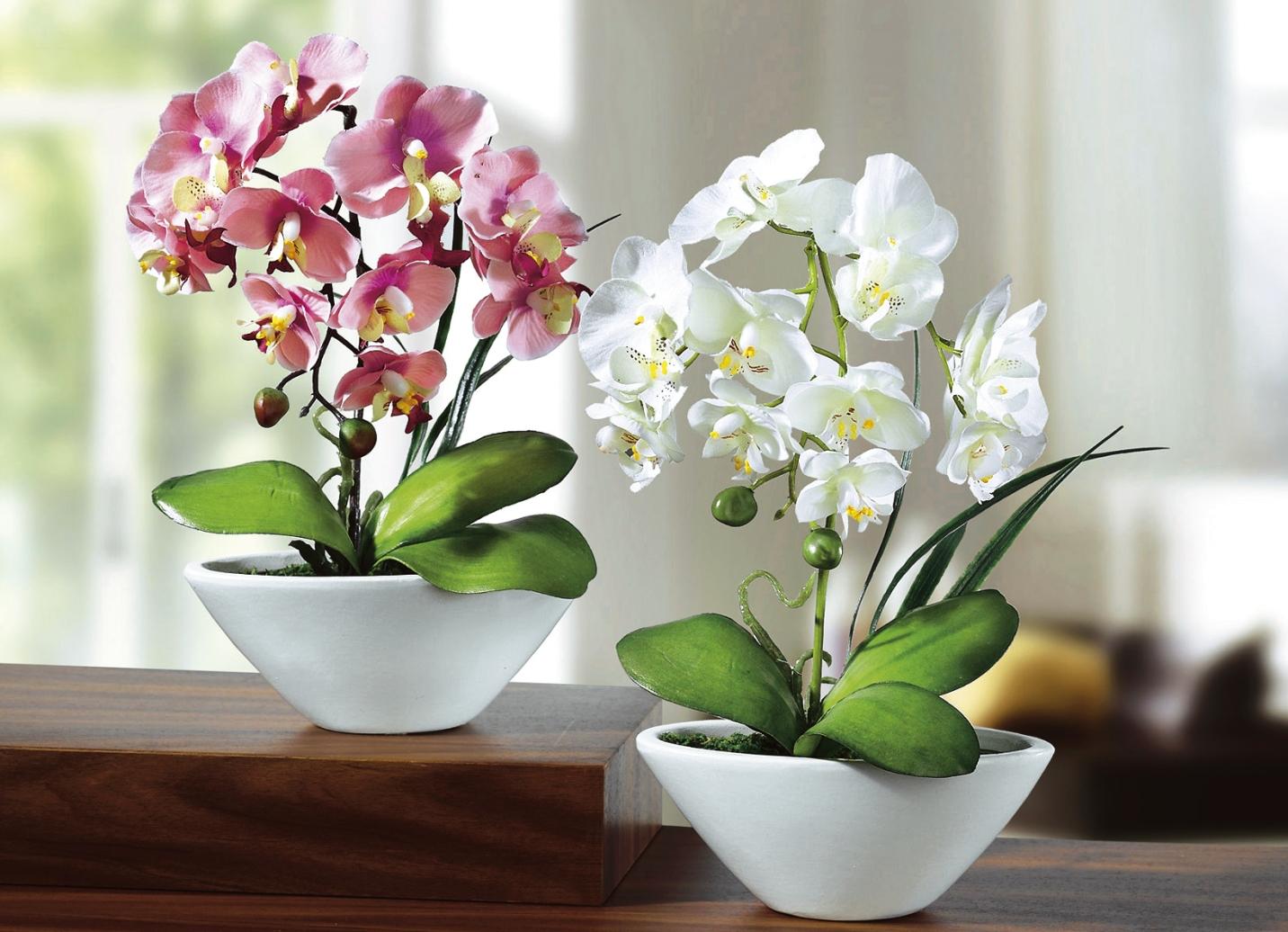 Orchideen 2er set kunst textilpflanzen bader - Duschvorhang mit orchideen ...
