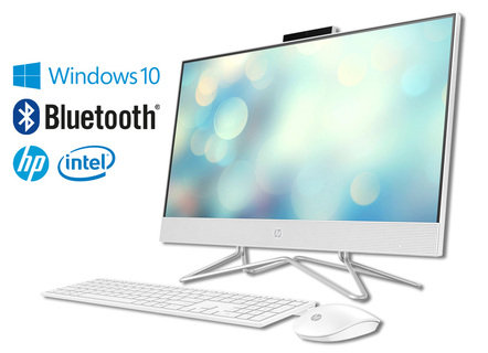 HP All-in-One PC 24-df0500ng